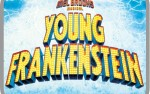 Image for The Mel Brooks Musical: Young Frankenstein