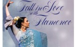 Image for Fall in Love with Flamenco