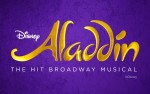 Image for Aladdin PASSWORD PROTECTED