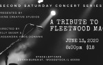 Image for A Tribute to Fleetwood Mac
