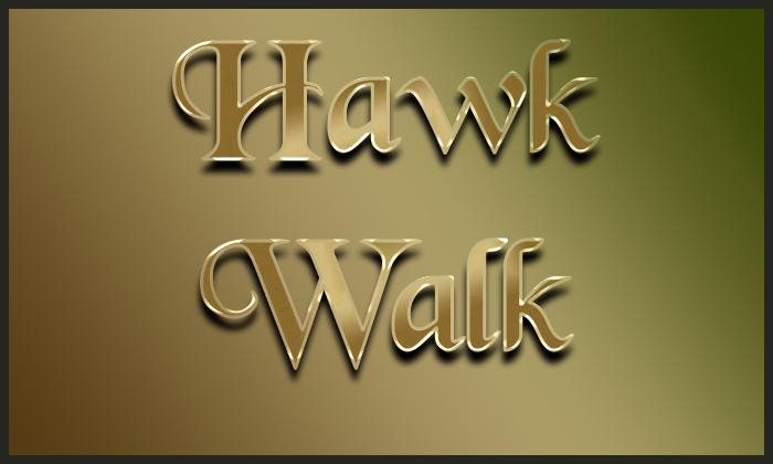 Image for Sherwood Forest Faire 2020 - Hawk Walk (Please Choose a Date)